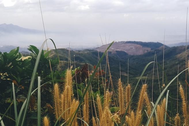 Mt-Balagbag-20160131-15