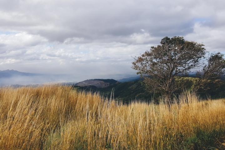 Mt-Balagbag-20160131-17