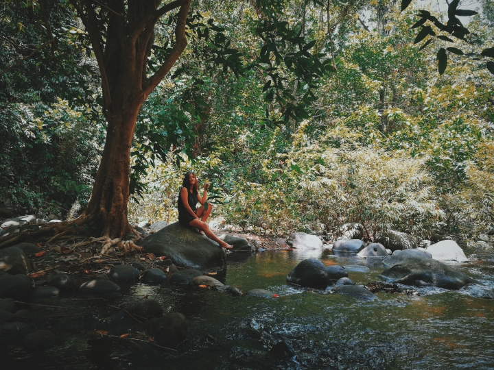 Pamulaklakin Forest Trail,Subic